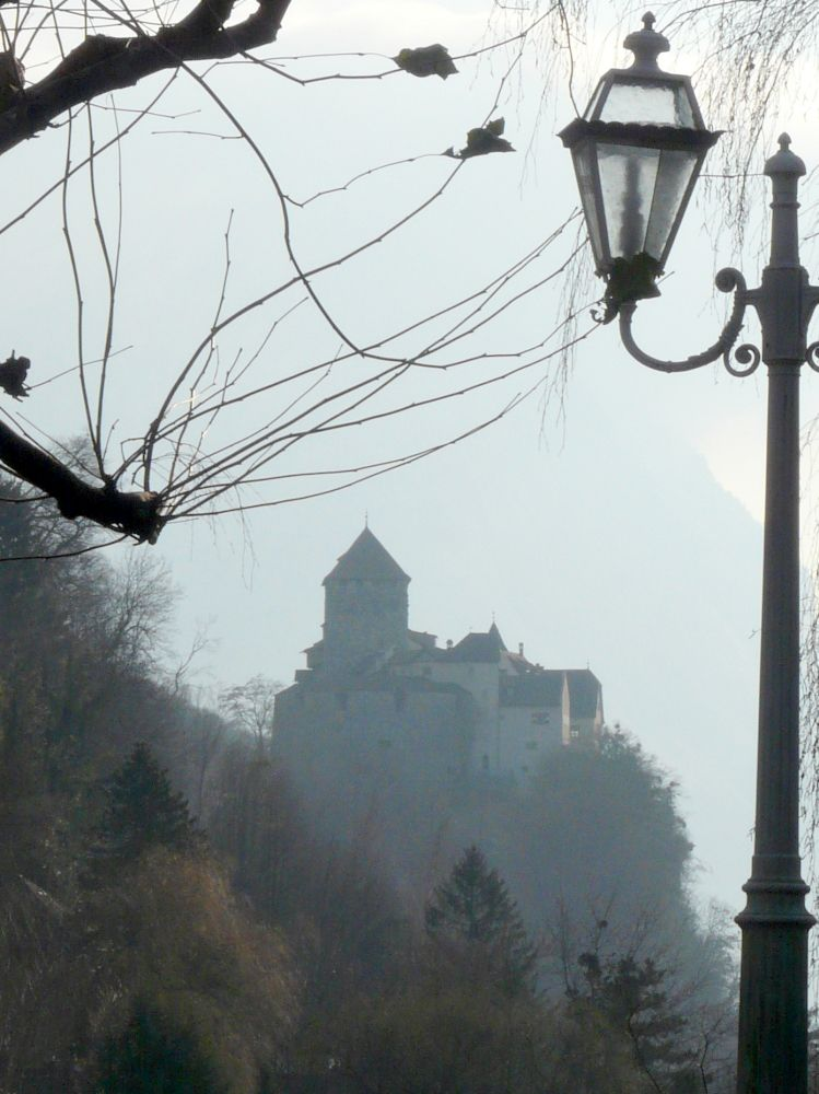 EINMALIGE VERWENDUNG Liechtenstein