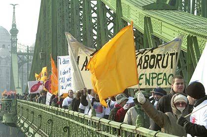 """In Budapest bildeten Tausende eine """"Kette des Friedens"""""""