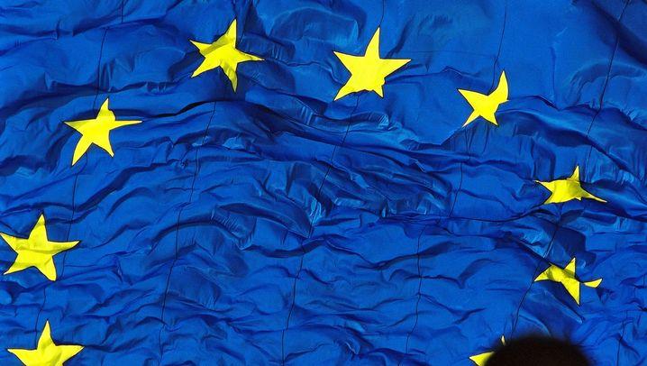Verschwendung von EU-Geldern: Von Schafen und Fischern