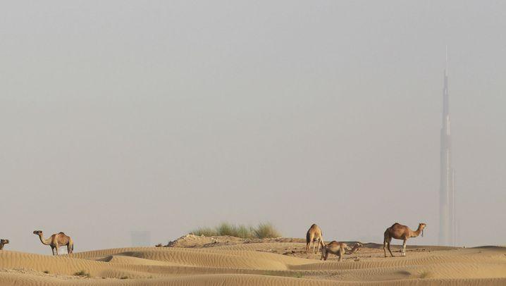 Rohstoff Sand: Mangelware