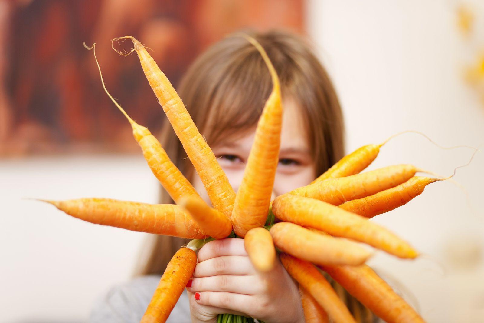 NICHT MEHR VERWENDEN! - Karotten / Gemüse / Kinder