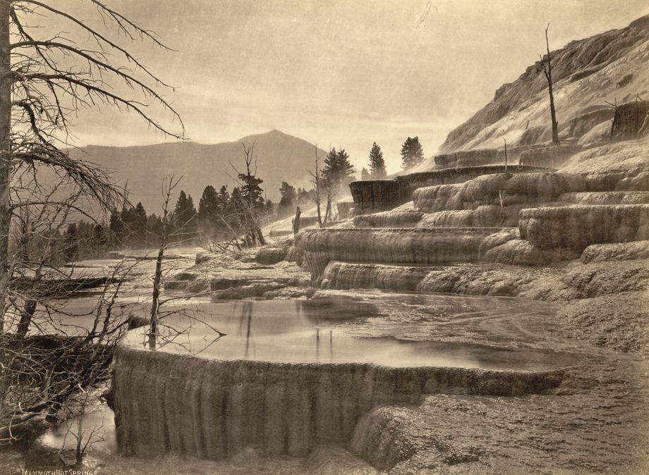 Die Mammoth Hot Springs im Yellowstone-Nationalpark