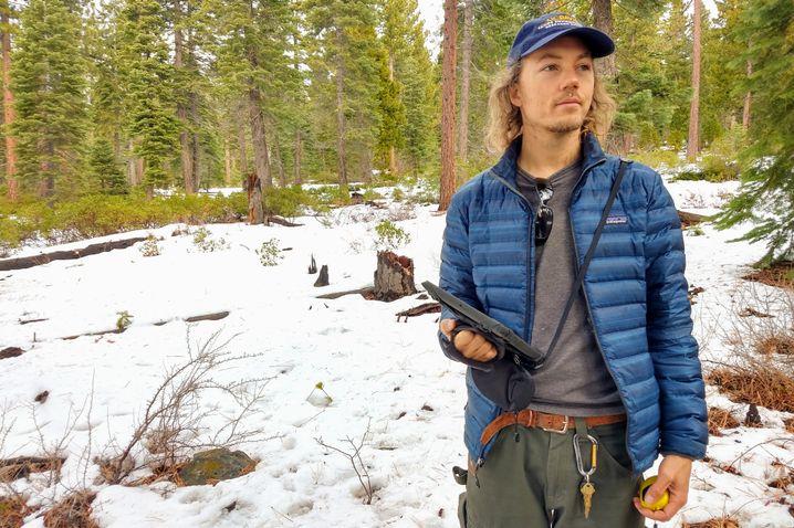 Forscher Vanderpool mit iPad: Suche nach kleinen Kiefern im großen Wald
