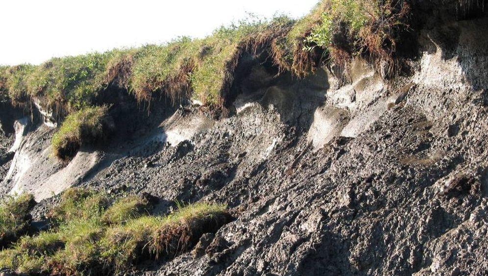 Permafrost: Das Schicksal des Eisbodens