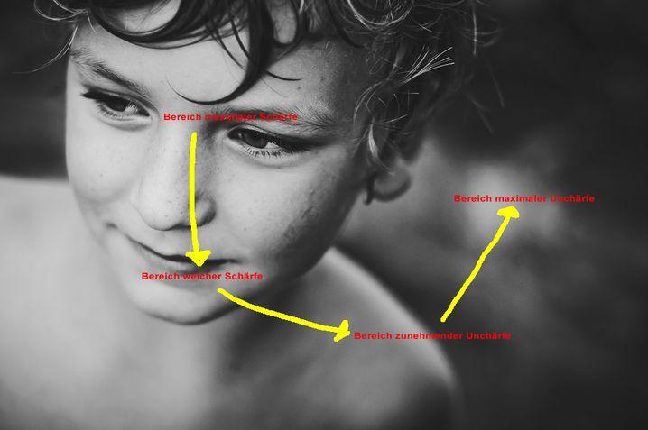 Schärfeverlauf: Maximum in der Augen- und Nasenpartie
