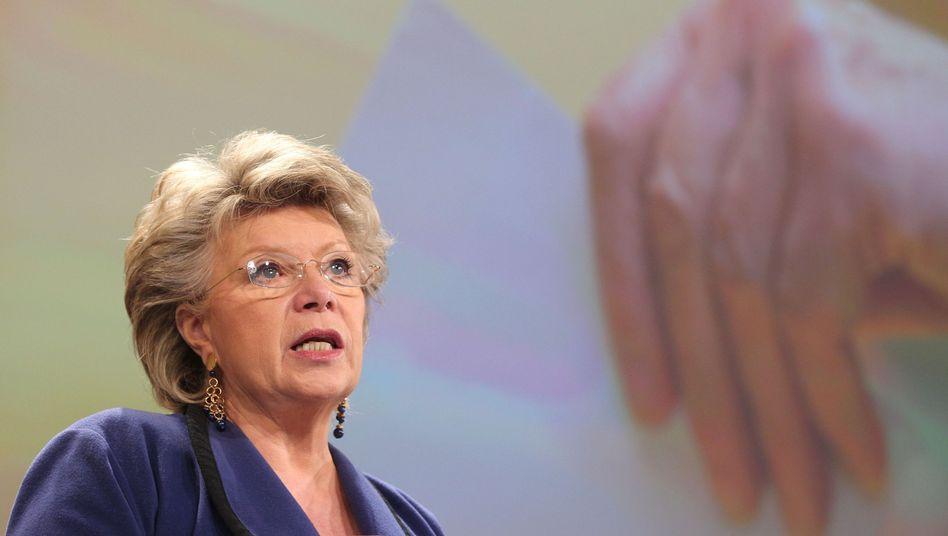 """Justizkommissarin Reding: """"Das sind sehr kinderreiche Familien"""""""