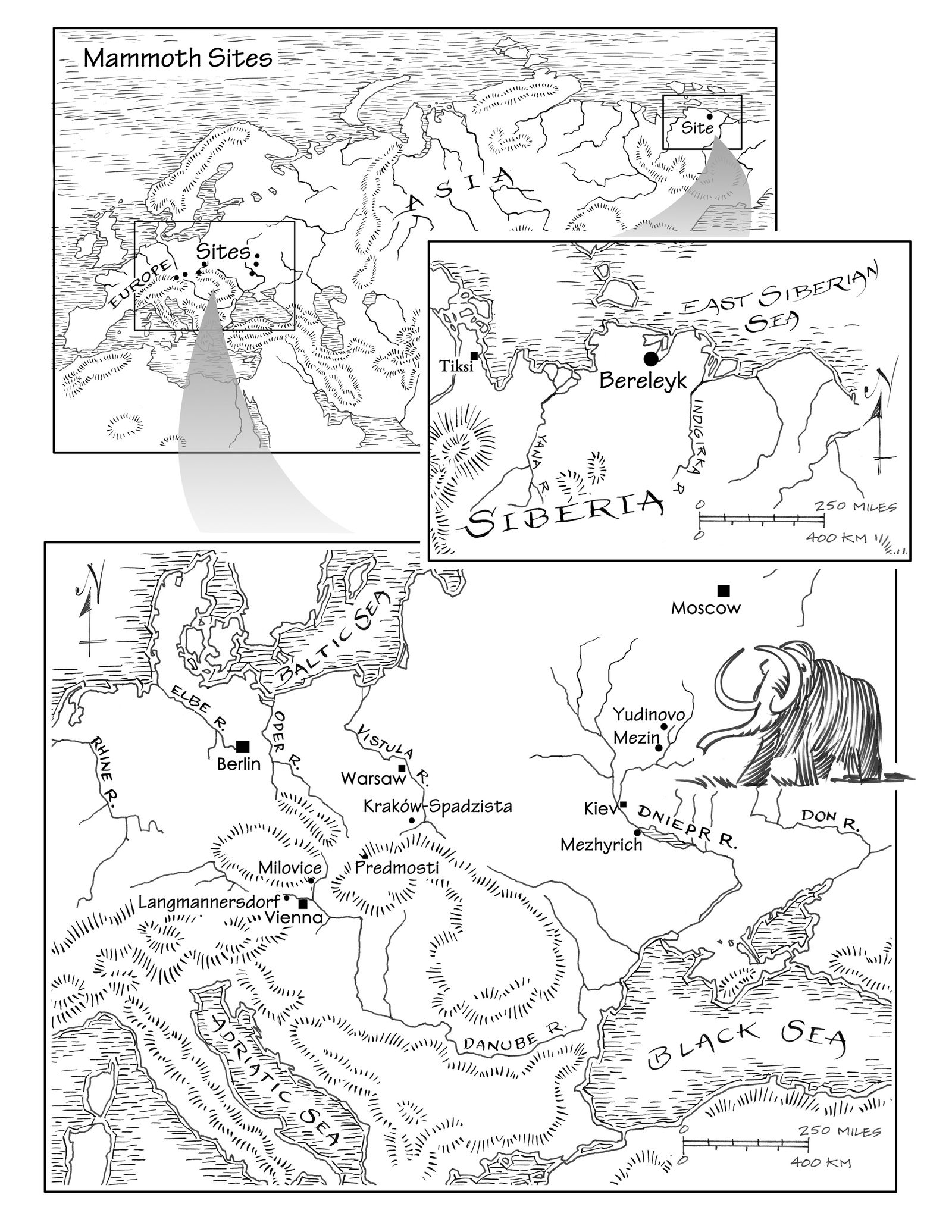 EINMALIGE VERWENDUNG Mammut/ Shipman