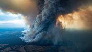 Diesen Anteil hatte der Klimawandel an den Buschbränden