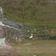 Drohnenbilder zeigen Kampf gegen drohende Umweltkatastrophe