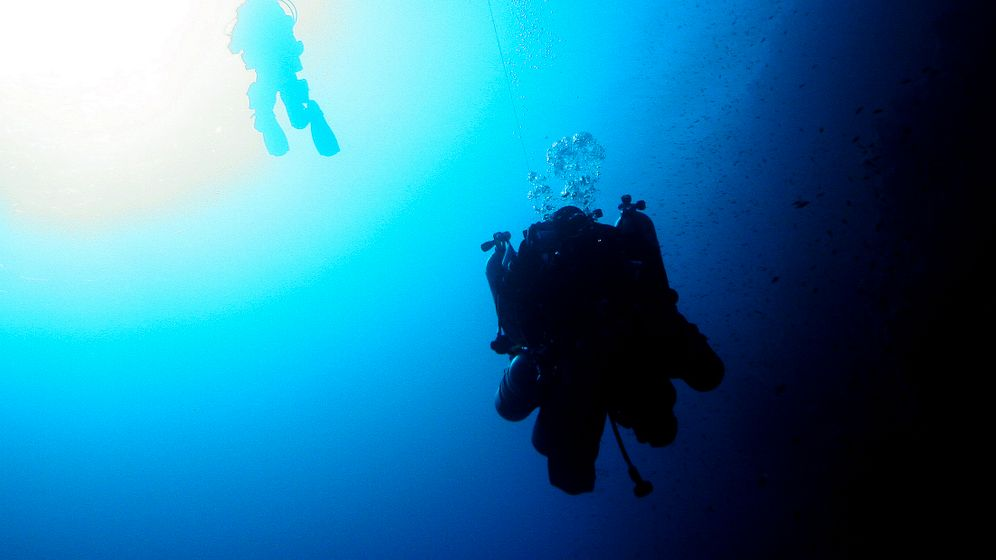 Photo Gallery: Diving the Blue Hole