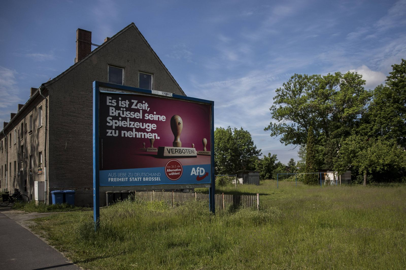 EINMALIGE VERWENDUNG AfD/ Wahlplakat