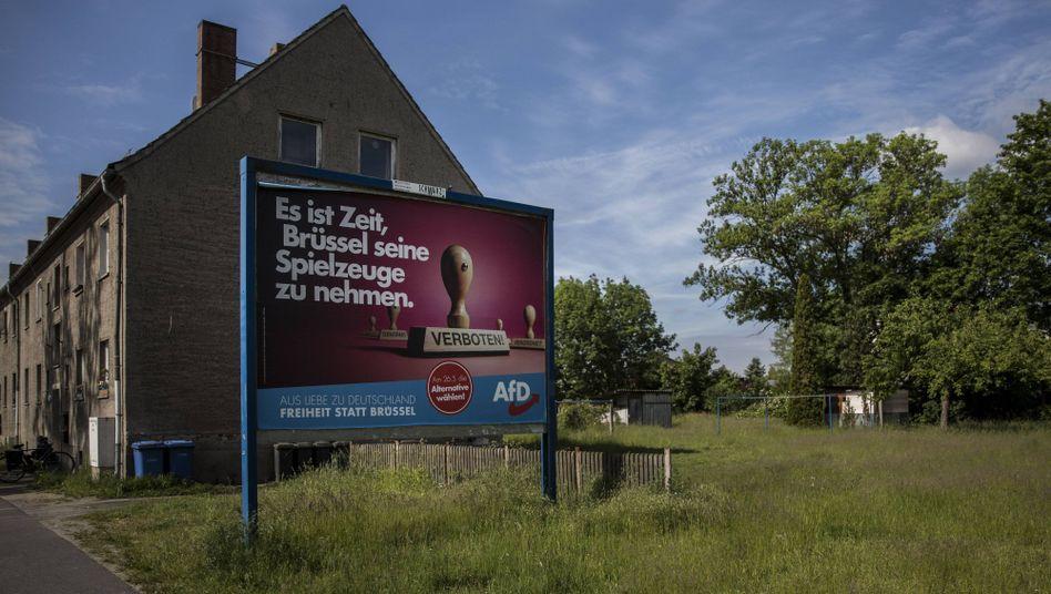 AfD-Wahlwerbung in Sachsen: Auf kommunaler Eben fällt die Abgrenzung oft schwer