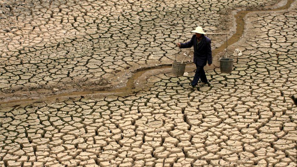 Der Fluss ist ausgetrocknet: Ein Bauer in Luliang (China) auf der Suche nach Wasser