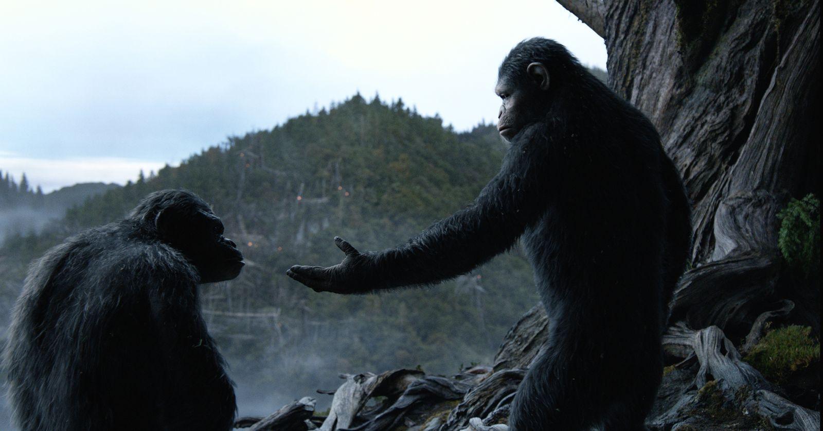 EINMALIGE VERWENDUNG Film/ Planet der Affen - Revolution