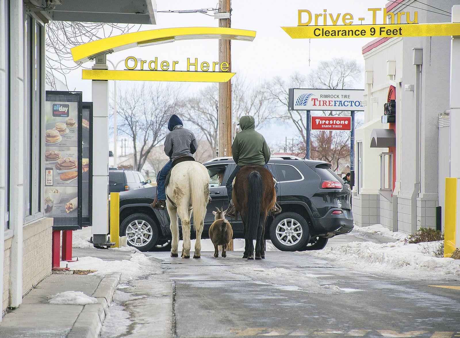 Wyoming/ Pferde bei McDonalds