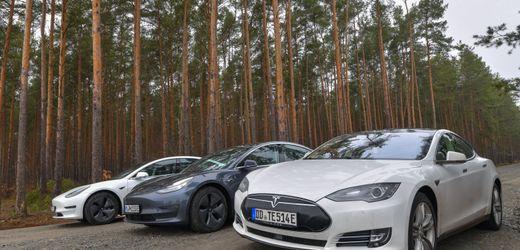 Tesla beantragt staatliche Förderung für Werk in Brandenburg
