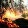 Klimaforscher warnen vor »Zombie-Feuern« in der Arktis