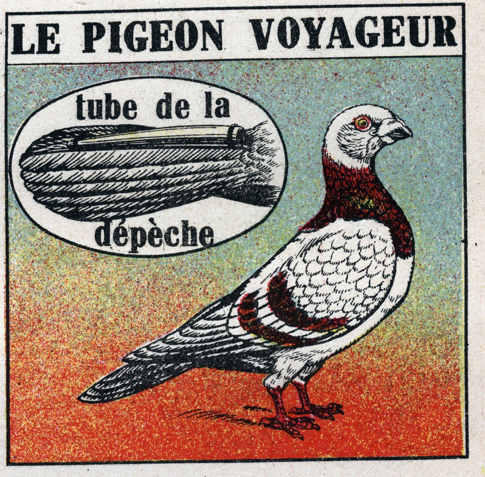 La poste le pigeon voyageur Illustration anonyme de 1925 Collection privee AUFNAHMEDATUM GESCH