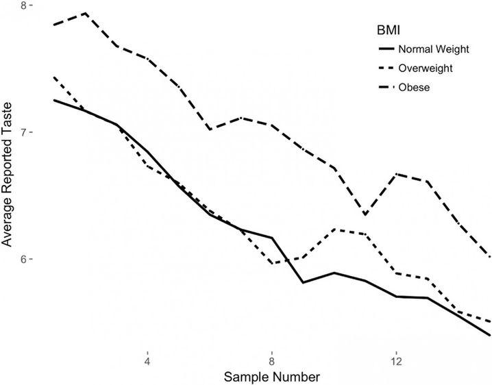 Die obere Linie zeigt, wie gut die Schokolade den fettleibigen Probanden im Verlauf des Versuchs schmeckte. In der feingestrichelten Linie werden die Werte der Übergewichtigen dargestellt, mit der durchgezogenen Linie die der Normalgewichtigen.