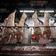 Fleischindustrie warnt vor Abschaffung von Werkverträgen