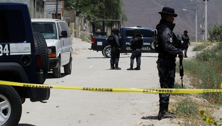 Morde in Mexiko: Ein tödliches Jahr