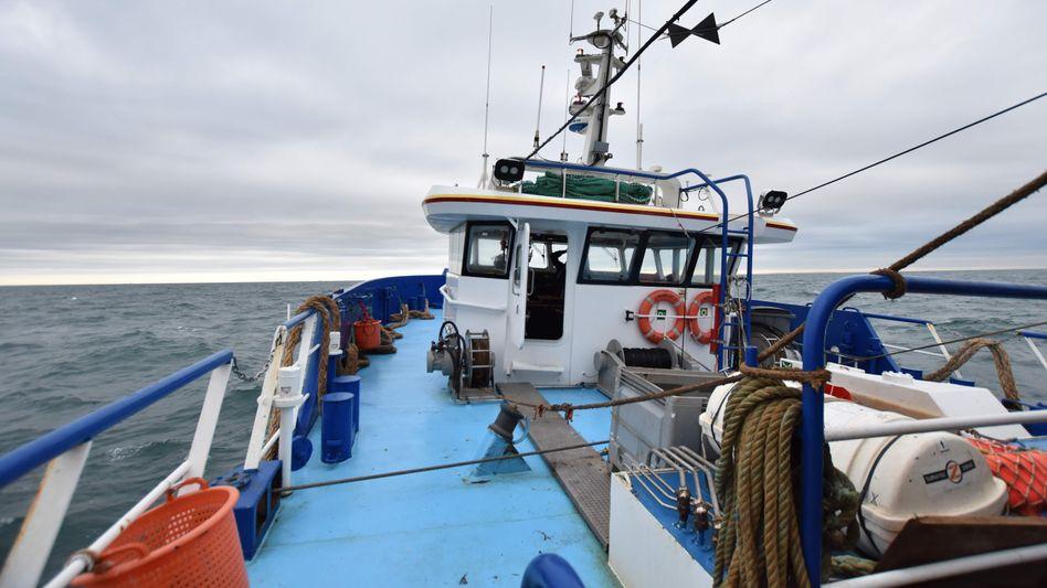 Französischer Trawler auf dem Weg in britische Gewässer