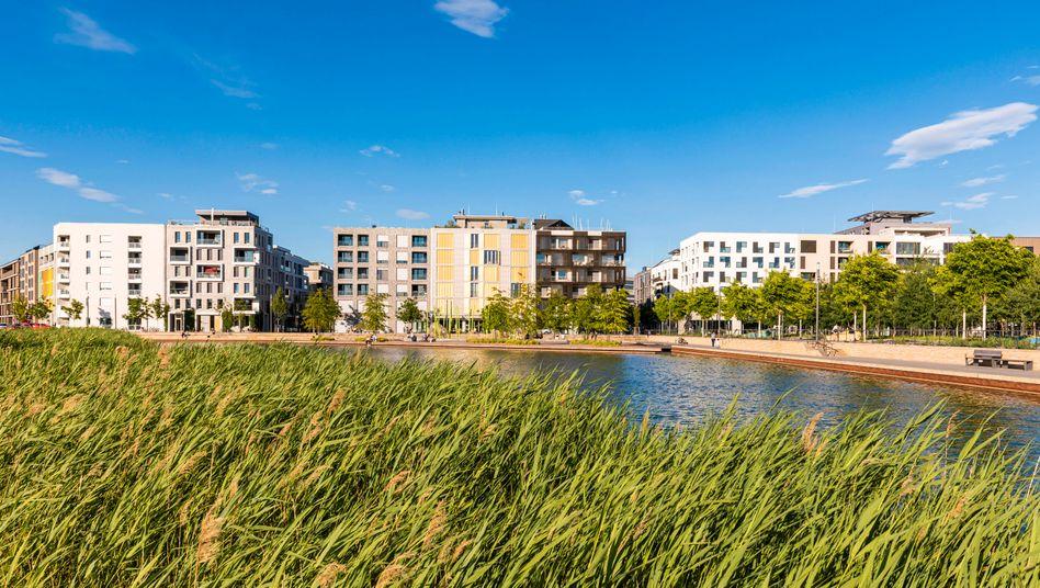 Energieeffiziente Häuser in Heilbronn (Baden-Württemberg): Pflanzen wirken in der Stadt wie natürliche Klimaanlagen