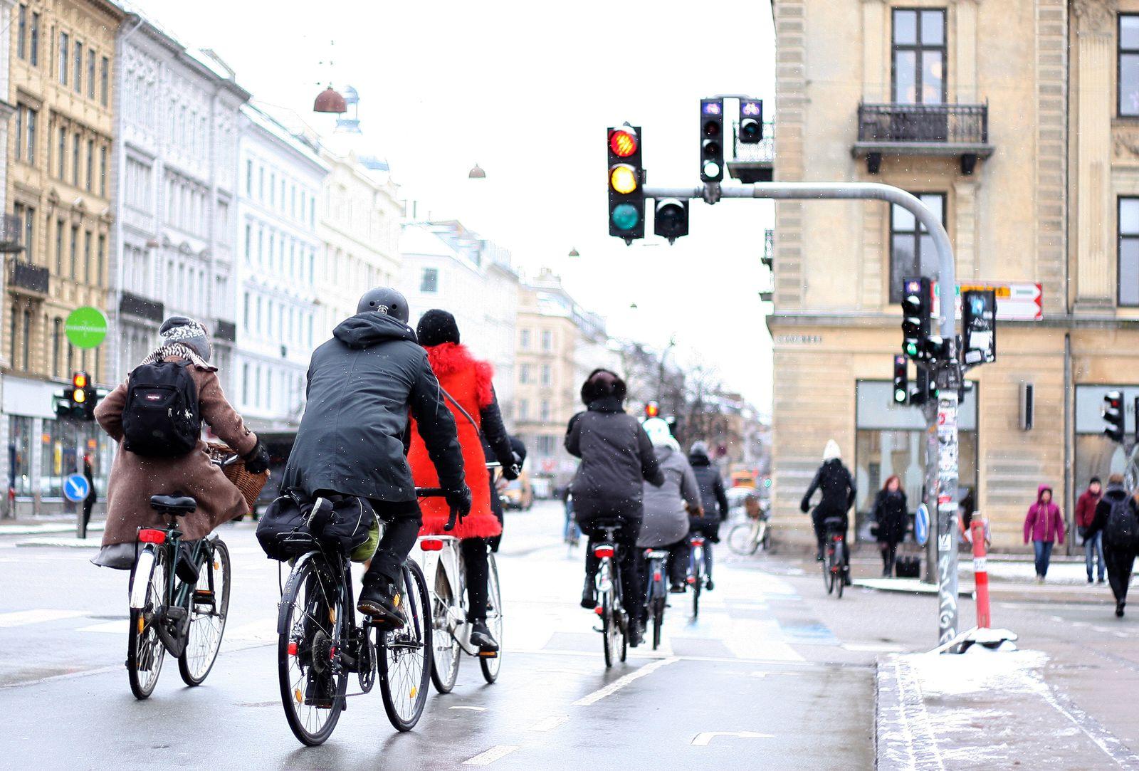 Radfahrer / Kopenhagen / Ampel