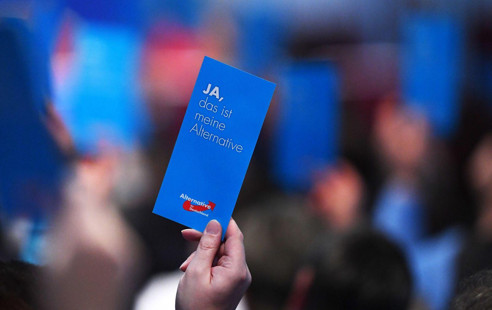 AfD-Landesparteitag / Brandenburg