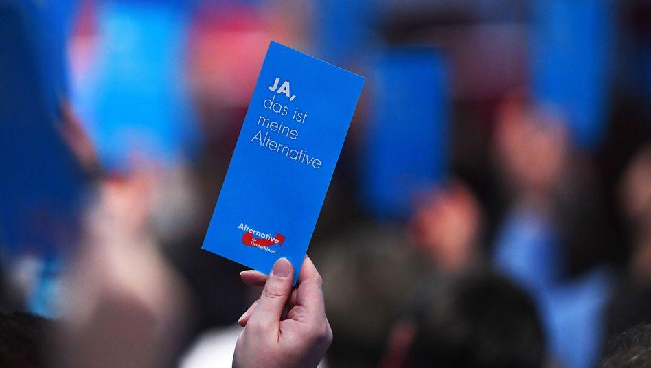 AfD-Landesparteitag (in Brandenburg)