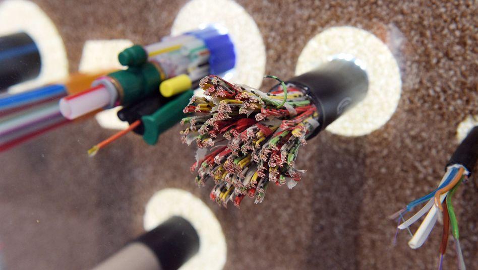 Kabelstränge in einer Wandverkleidung