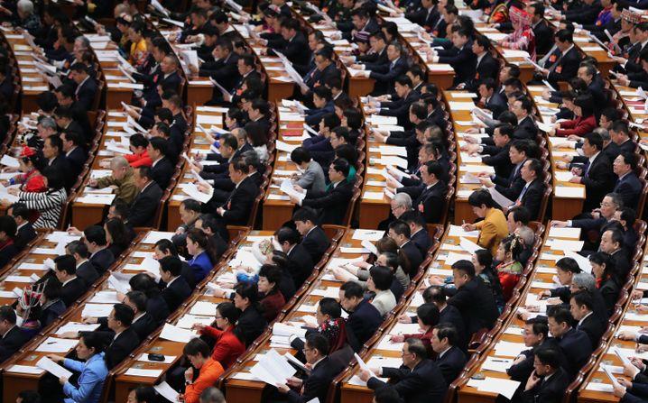 Delegierte in der Plenarsitzung des Volkskongresses