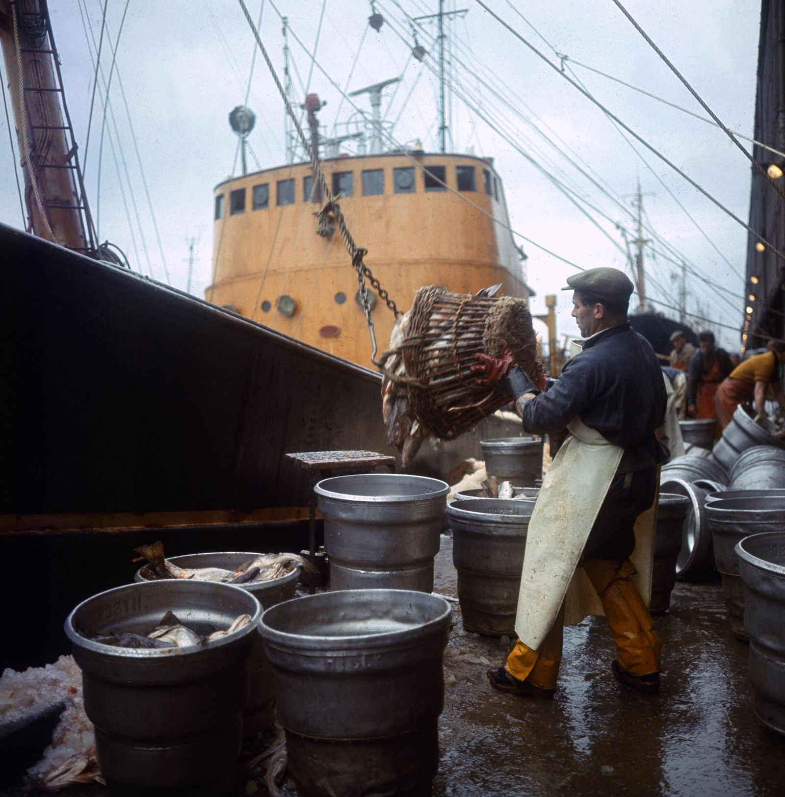 The Trawler Rose Orion returns to Hull with it's catch after a trip to Greenland, with fishermen sorting catch . July 19