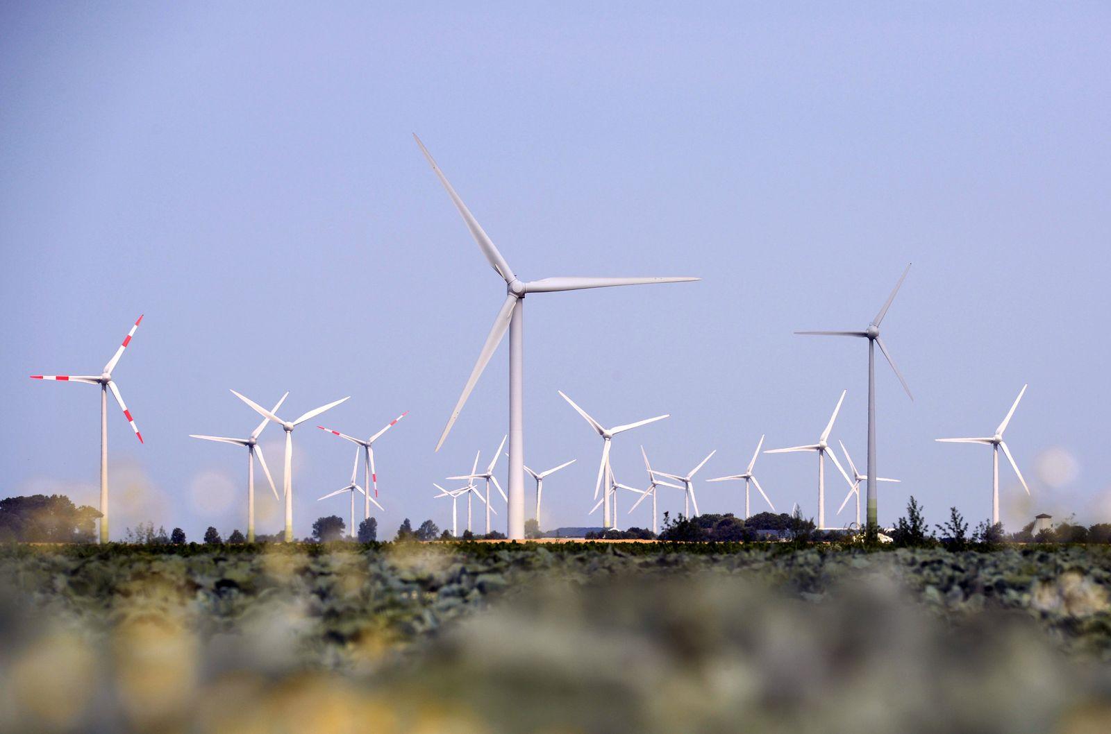 Ökostrom / Schleswig-Holstein / Windenergie