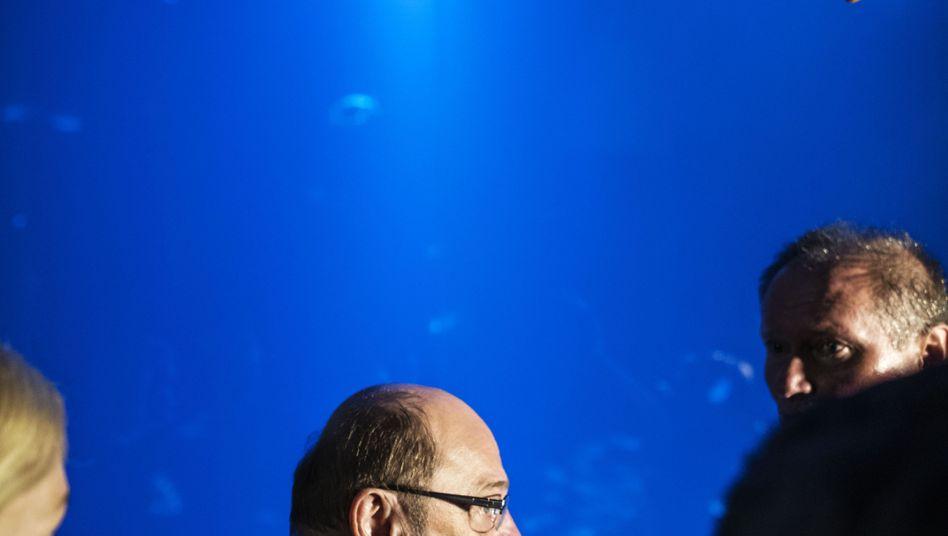 Herausforderer Schulz in Stralsund: Mit Coach gegen Merkel