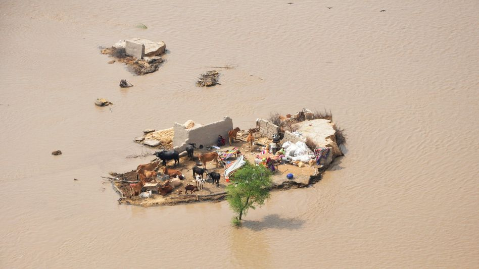 A family marooned by flood waters is seen from an Army helicopter in the Rajanpur district of Pakistan's Punjab province on August 9, 2010.