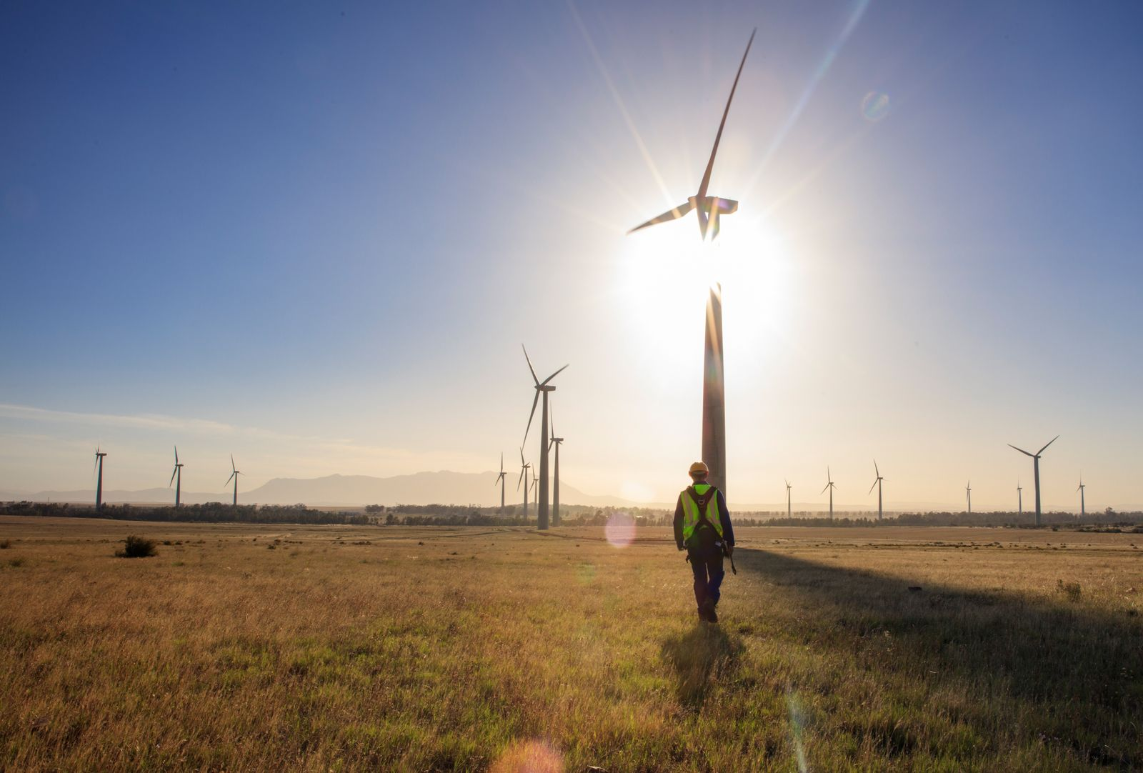 Engineer walking on a wind farm at sunset