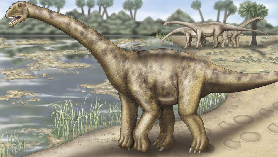 Gigant der Urzeit (Zeichnung): Haben Sauropoden das Klima ihrer Zeit verändert?