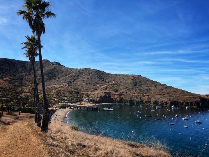 Die Isthmus-Bucht im Norden von Catalina Island: Hier verbrachte Natalie Wood ihre letzte Nacht auf einer Jacht