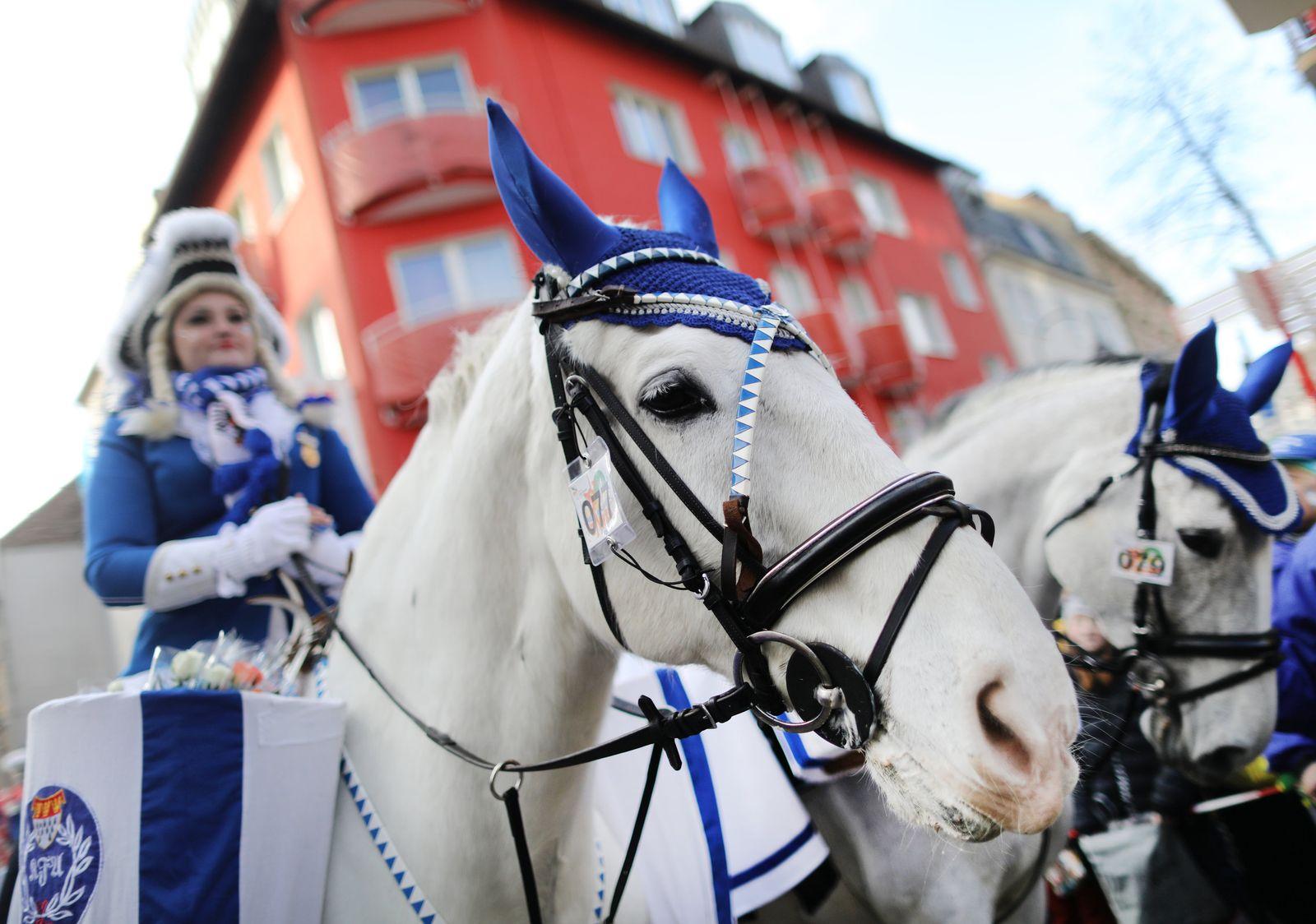 Pferde im Karneval: Behörden-Richtlinie