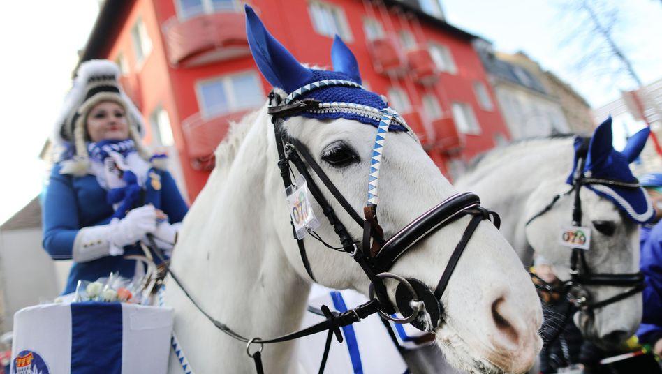 """Berittene Karnevalistin in Köln (Archivbild): """"Das Gewicht darf nicht mehr als 15 Prozent des Pferdegewichtes betragen"""""""