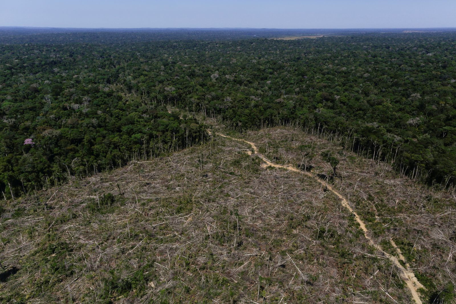"""FILE PHOTO: An aerial view shows deforested land during """"Operation Green Wave"""" conducted by agents of the Brazilian Institute for the Environment and Renewable Natural Resources, or Ibama, to combat illegal logging in Apui"""