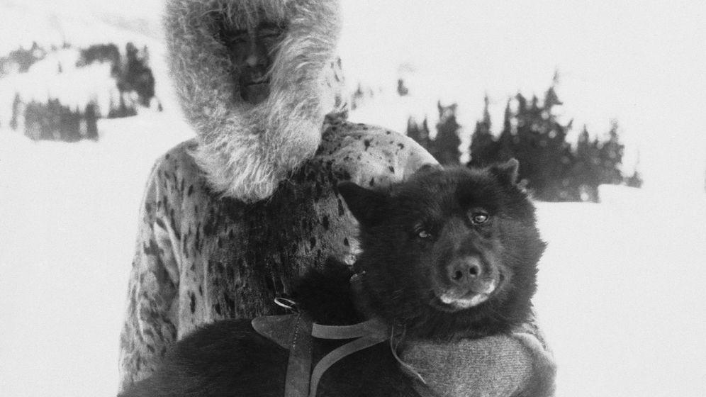 Alaska: Lebensretter auf vier Pfoten