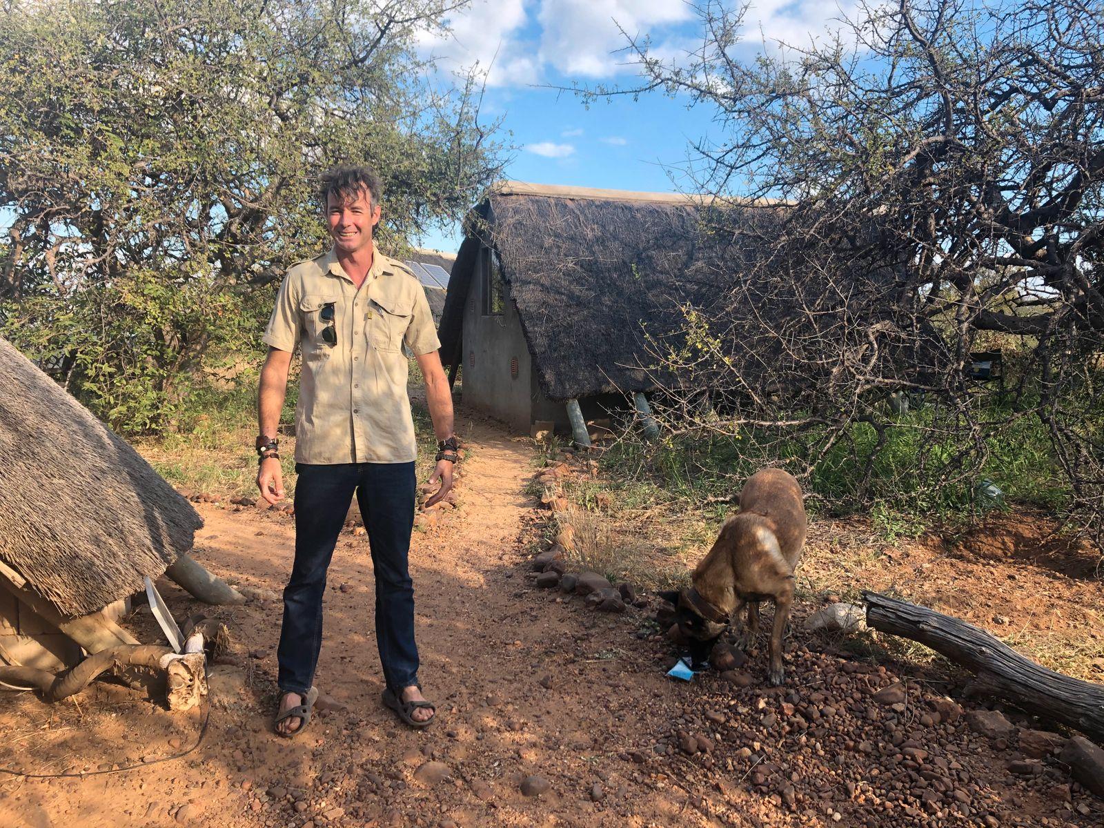 Wildlife Afrika