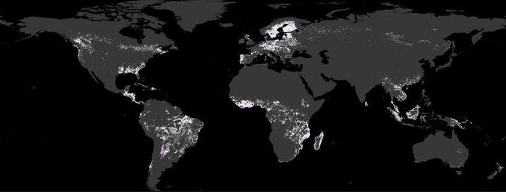 Entwaldungsprozess für Deutschland: Auch hier zeigt die Karte (bei gleicher Skala) wie oben die Abholzung in den einzelnen Ländern in Prozent