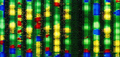 """DNA-Sequenz: """"Glauben Sie nur ja nicht, dass Sie mit einem solchen Test etwas tun, das wichtig für Ihre Gesundheit wäre"""""""