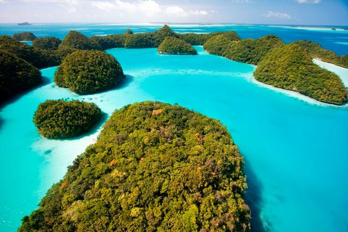 Palau ist der pazifischen Inselregion Mikronesien zuzuordnen