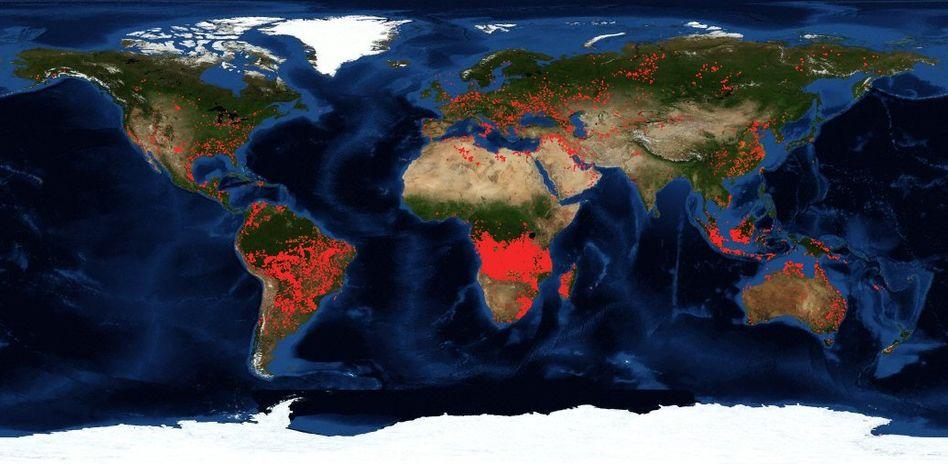 Die Feuer-Weltkarte der Nasa zeigt, wo es auf der Welt brennt