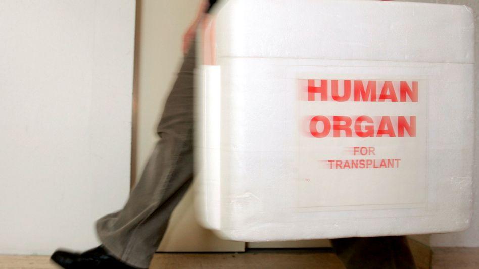 Spezial-Kühlbox für Spenderorgane