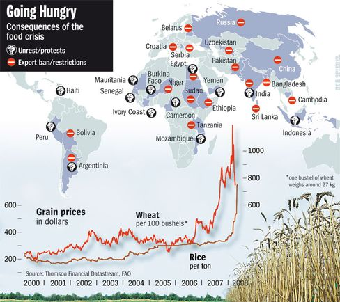 Graphic: Consequences of the global food crisis